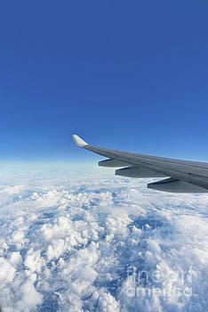 Aircraft wing by Viktor Birkus