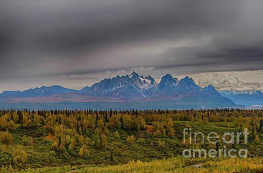 Alaska Range, Denali Nat'l Park by Bernita Boyse