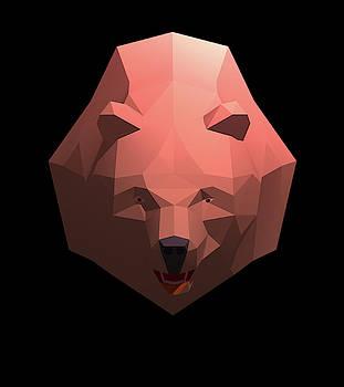 Alaskan Grizzly by Robert Bissett