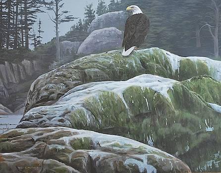 Alaskan Sentinel by Peter Mathios