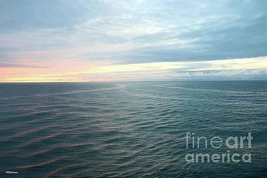 Alaskan Sunset by Veronica Batterson