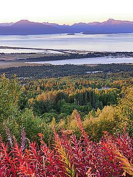 Alaska's Kachemak Bay by David Frankel
