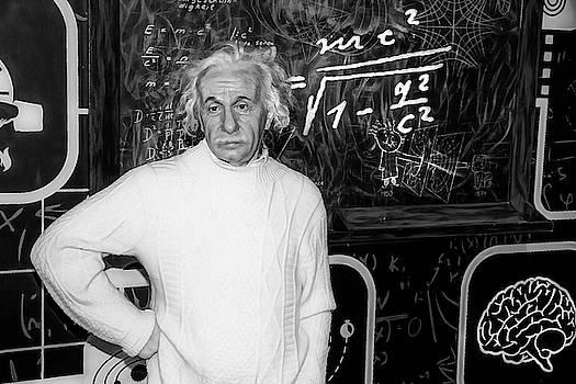Albert Einstein by Miroslava Jurcik