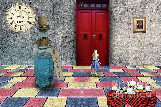 Alice 2 by Jim Hatch