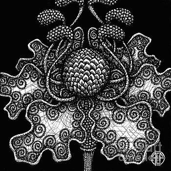 Amy E Fraser - Alien Bloom 18 Black and White