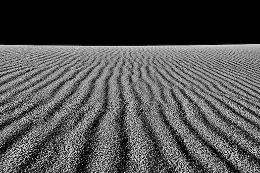 Alien Landscapes 1 by Rand