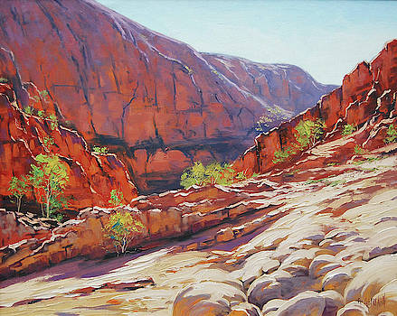 Alive Springs Ormiston Gorge  by Graham Gercken