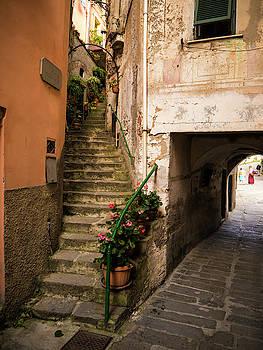 Alleyways in Riomaggiore by Rae Tucker