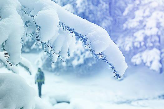 Alone tourist walking through snowy forest by Lukasz Szczepanski