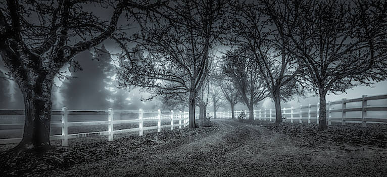 Along a Country Road by Don Schwartz