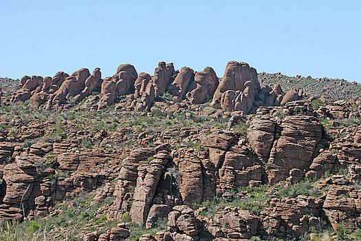 Along Devils Canyon Arizona by Tom Janca