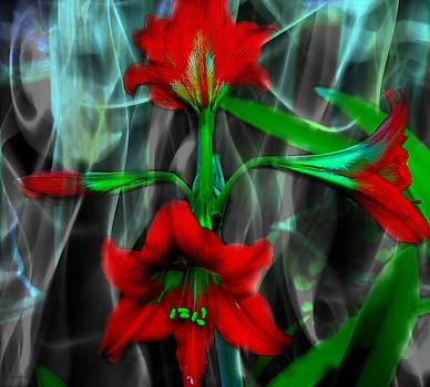Amaryllis in Smoke  by Yvonne Sewell