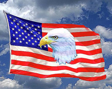America Flag by Dennis Dugan