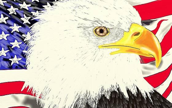 America the Beautiful by Ronni Dewey