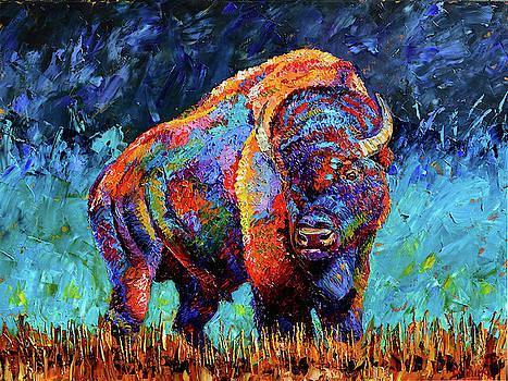 American Bison by Debra Hurd