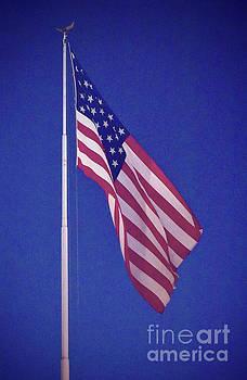American Flag by Ellie Asha Photography