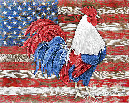 American Rooster B2 by Jean Plout