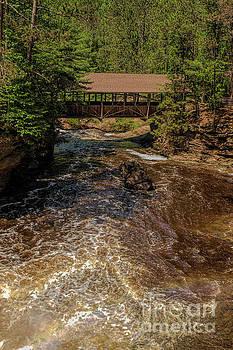Amnicon Falls State Park Covered Footbridge by Nikki Vig