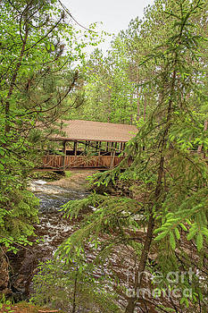 Amnicon Falls State Park Covered Footbridge Through the Towering Pines  by Nikki Vig