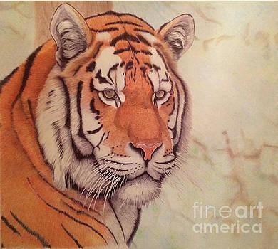 Amur tiger, Siberian tiger by Oleg Kozelskiy
