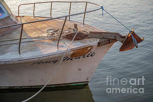 Amy Marie - Pleasure Boat by Dale Powell