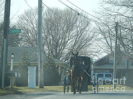 Christine Clark - An Amish Buggy Travelling Down the Road