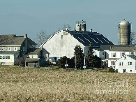 Christine Clark - An Amish Farm in December