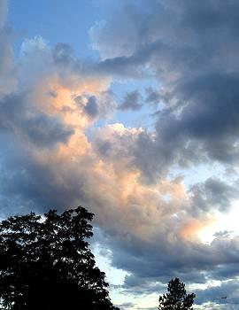 An Easeful Sky by Will Borden