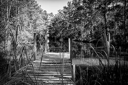 An Old Dock by Bob Decker