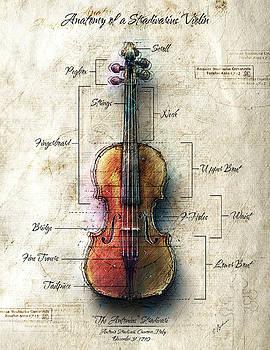 Anatomy of A Stradivarius Violin by Gary Bodnar
