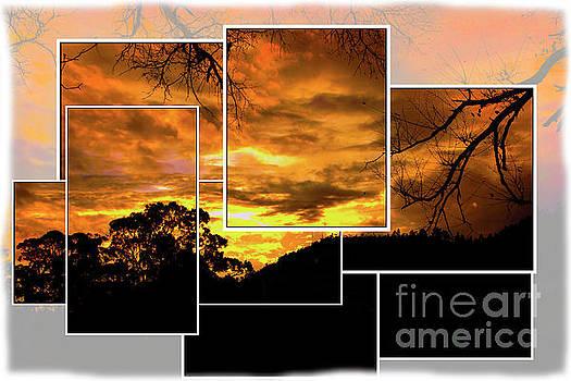 Andes Sunrise Over The Bosque De Monay II by Al Bourassa