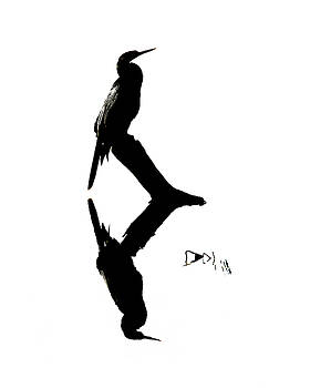 Anhinga - Silhouette and Reflection by Mitch Spence