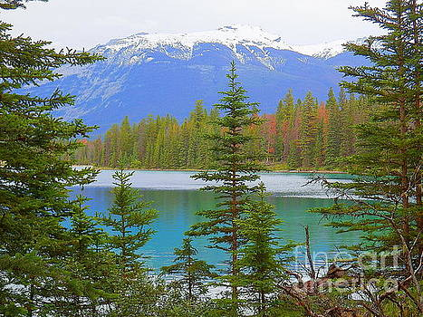 Annette Lake Jasper National Park Alberta Canada by Art Sandi