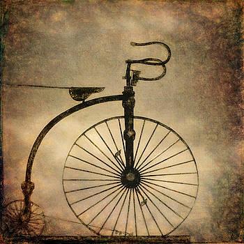 Antique Bicycle I  by David Gordon