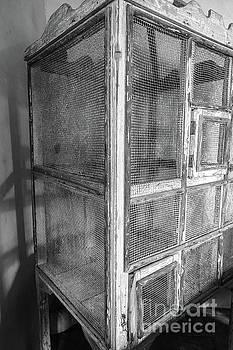 Antique Bird Cage by Edward Fielding