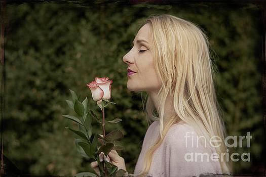 Antique Rose by Klae Edwin