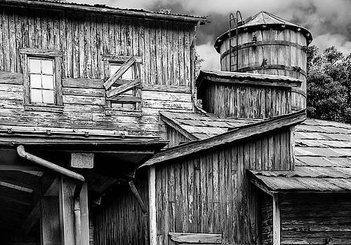 Anyone Home? by Judi Saunders
