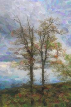 April BRP Trees 4 by Cathy Lindsey
