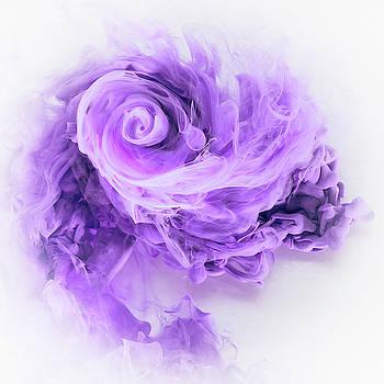 David Thompson - Aqueous Bloom - Amethyst