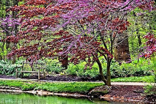 Allen Nice-Webb - Arboretum Resting Place