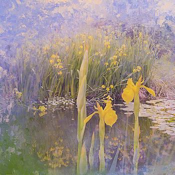 Arboretum3 by Jeff Burgess