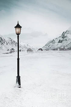 Arctic Echoes by Evelina Kremsdorf