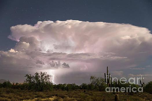 Arizona Monsoon Thunderstorm  by James BO Insogna