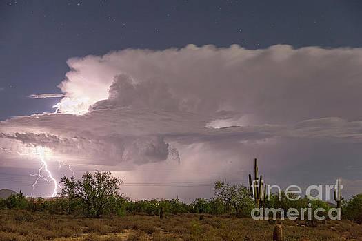 Arizona Power by James BO Insogna