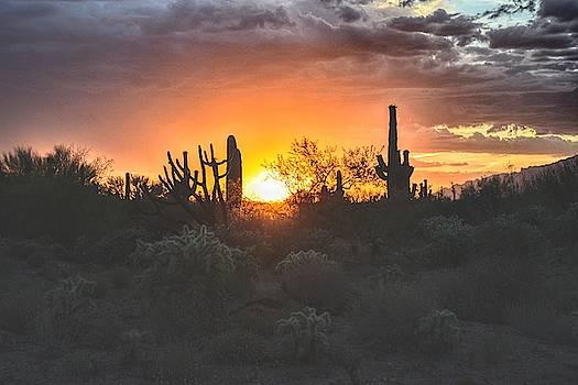 Chance Kafka - Arizona Sun Orb and Desert