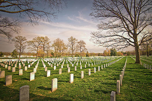 Arlington Cemetery I by Dawn Wayand