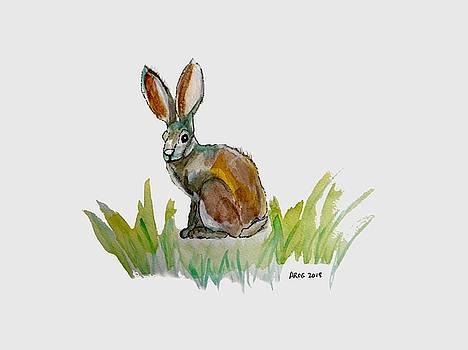 AROGs Rabbit by Ahonu