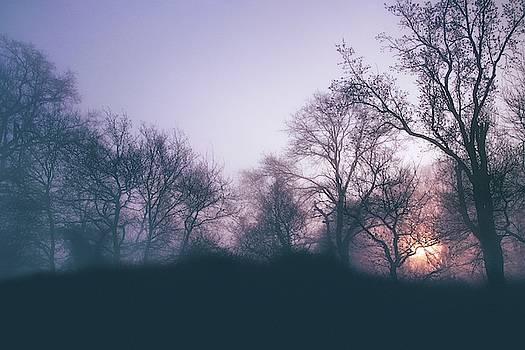 Around The Forest by Jaroslav Buna
