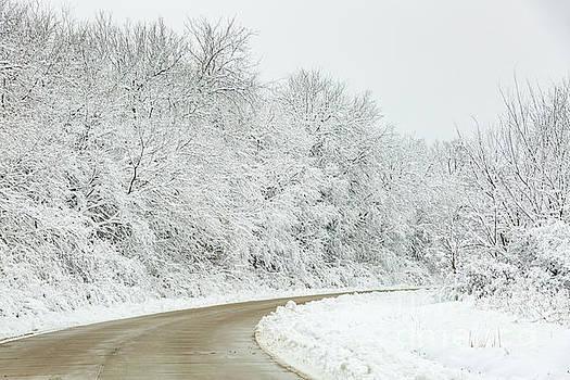 Around the Snowy Bend by Terri Morris