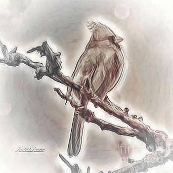 Art From The Heart Cardinal 1 by JudithAnne Monahan